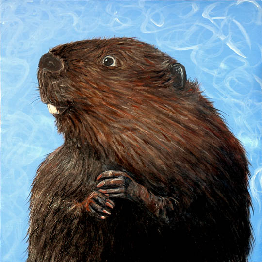 Wet Beaver 2007 I'm just about to hang a new show more details in a